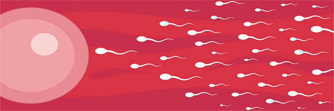 10 effective ways to make healthy sperm