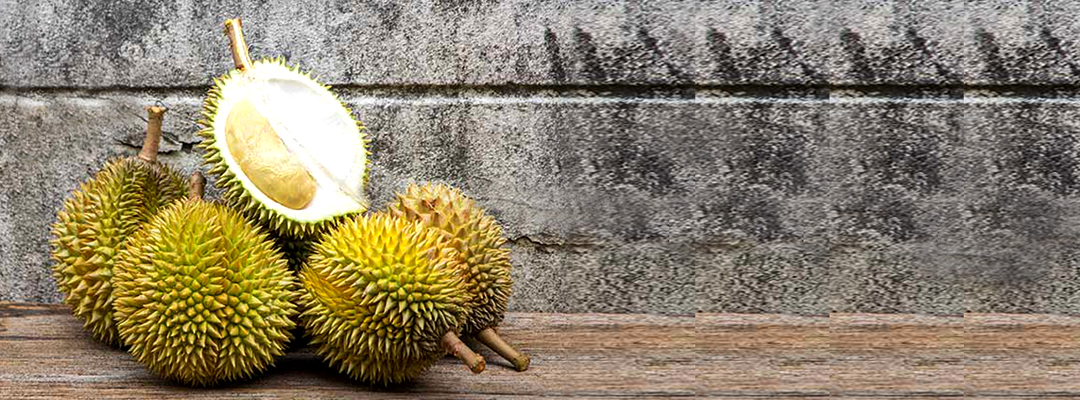 How Durian Fruit will help you Conceive?