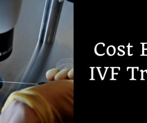 Cost Effective IVF Treatment in INDIA
