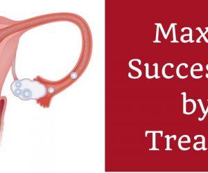 Maximum Success Rates of Fertility by IUI Treatment