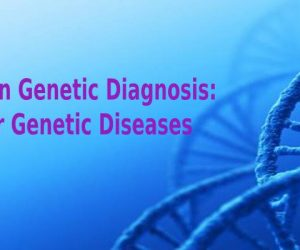 Preimplantation Genetic Diagnosis: Solution for Genetic Diseases